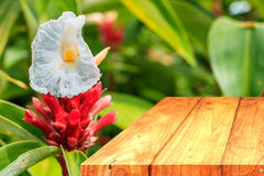 Table vide avec la fleur Images libres de droits