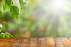 Table vide de conseil en bois devant le fond naturel brouillé Vieux bois de perspective au-dessus de tache floue dans naturel image libre de droits