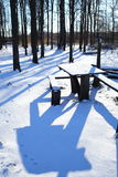 Table in winter forest Royalty Free Stock Photography