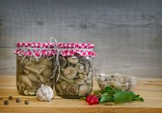 Home canning: marinated mushrooms in glass jars stock photo