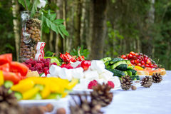 Table in the woods decorated to the birthday Stock Image