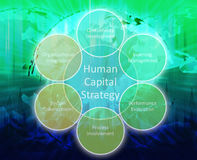 Tableau d'affaires de capital humain Images stock
