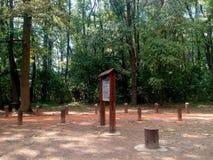 Tableau d'infos sur la voie pulsante dans la forêt Photos libres de droits