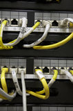 Tableau de connexions d'Ethernet Images stock