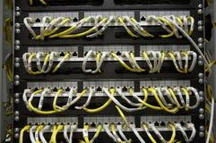 Tableau de connexions d'Ethernet Image libre de droits
