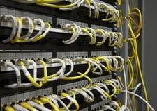 Tableau de connexions d'Ethernet Photographie stock libre de droits