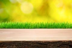 Tableau de pique-nique en bois Photo libre de droits