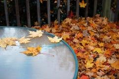 Tableau en automne Photographie stock libre de droits