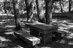 Tableau et chaises dans le domaine Image stock