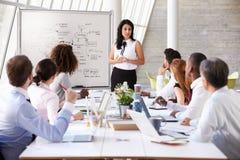 Tableau hispanique de salle de réunion de Leading Meeting At de femme d'affaires photo stock