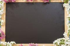 Tableau noir photographie stock libre de droits