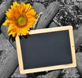 Tableau noir et clé de couleur jaune de tournesol Photographie stock libre de droits