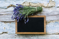 Tableau noir et lavande Image stock