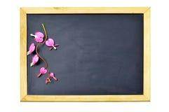 Tableau noir vide de jour de valentines avec des fleurs de défenseur de la veuve et de l'orphelin Photographie stock libre de droits