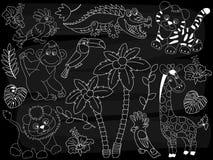 Tableau Safari Animals Set de vecteur Jungle de vecteur réglée sur le fond de tableau noir Photographie stock