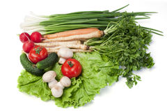 Tableau of vegetables Royalty Free Stock Photo