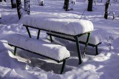 Tableaux et bancs en parc après chutes de neige lourdes Photo libre de droits