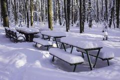 Tableaux et bancs en parc après chutes de neige lourdes Image stock