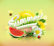 Tablecloth and sun behind, grass, flowers of chamomile and da. Summer, time for a picnic, watermelon, nature, outdoor recreation, a tablecloth and sun behind Stock Photo