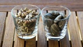 Tableglasses de Twoon con las rocas y las conchas marinas o Fotos de archivo