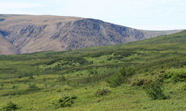 Tableland Mountains in Newfoundland Stock Images