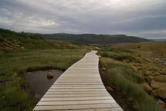 tablelands Стоковая Фотография RF