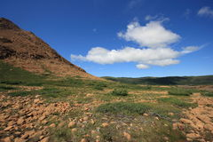 Tablelands Landscape Stock Image