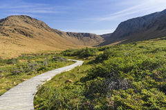 Tablelands Trail Boardwalk Royalty Free Stock Photography