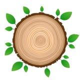 Tablero aislado tablón de madera con follaje verde stock de ilustración