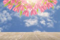 Tablero de la mesa gris del vintage y flores rosadas en fondo borroso del cielo azul Imagen de archivo