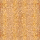 Tablero de madera para el fondo inconsútil - olmo cárpato amarillo foto de archivo libre de regalías