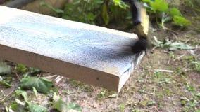 Tablero de madera de pintura con 4K antiséptico almacen de metraje de vídeo