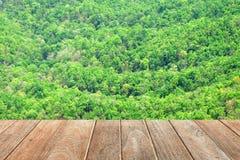 Tablero de madera vacío con Forest Background Fotos de archivo