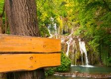 Tablero de madera vacío en el árbol, rodeado por una cascada en el bosque Imágenes de archivo libres de regalías