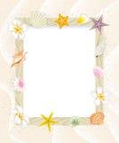 Tablero de mensajes del verano, Shell Decoration-EPS10 Fotos de archivo libres de regalías