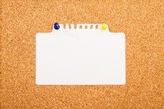 Tablero del corcho Fotografía de archivo libre de regalías