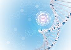 Tablero del espacio en blanco de la información 3d DNA humana Fondo Foto de archivo libre de regalías