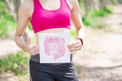 Tablero del intestino de la toma de la mujer fotografía de archivo libre de regalías