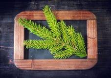 Tablero del menú de la Navidad con las ramas del abeto Foto de archivo