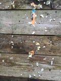 Tablero resistido, de madera del perno Fotos de archivo