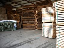 Tableros de madera de la haya imágenes de archivo libres de regalías