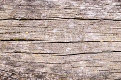 Tableros de piso del Grunge Imagenes de archivo