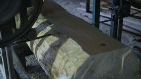Tableros del sawing de registros con la sierra de la banda metrajes