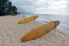 Tableros que practican surf y banderas rojas en la playa imagen de archivo
