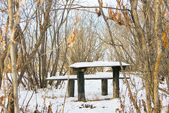 Tables and benches covered with snow in the forest.  Stock Photography