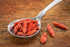Tablespoon of dried goji berries Royalty Free Stock Photography