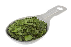 Tablespoon of dried parsley royalty free stock photography
