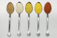 Tablespoons разных видов порошков специи Стоковые Изображения RF
