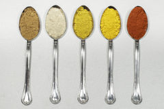 Tablespoons of different types of spice powders Royalty Free Stock Images