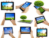 Tablet. Computer isolated on the white backgrounds. tree Royalty Free Stock Photo